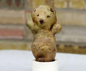 qui veut faire un  gros câlin à cet ourson-patate